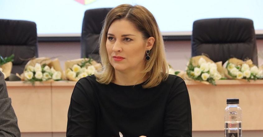 ANDREEA MEICI